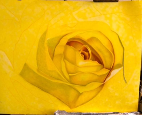 Big Texas Yellow Rose