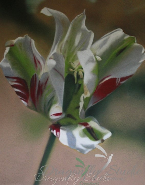 Abstract Tulip Pastel Floral